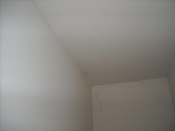 a picture that shows raccoon urine leaking through the ceiling from the attic