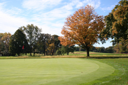 Golf Course Grounds 19