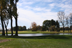 Golf Course Grounds 17