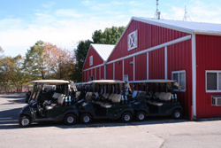 Golf Carts at one course