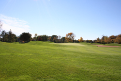 Golf Course Grounds 9