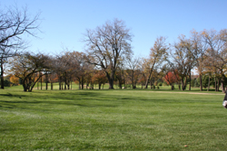 Golf Course Grounds 7