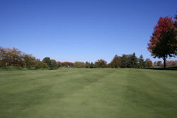 Golf COurse Grounds 4