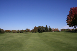 Gold Course Grounds 3