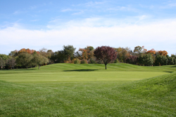 Golf Course Grounds 1
